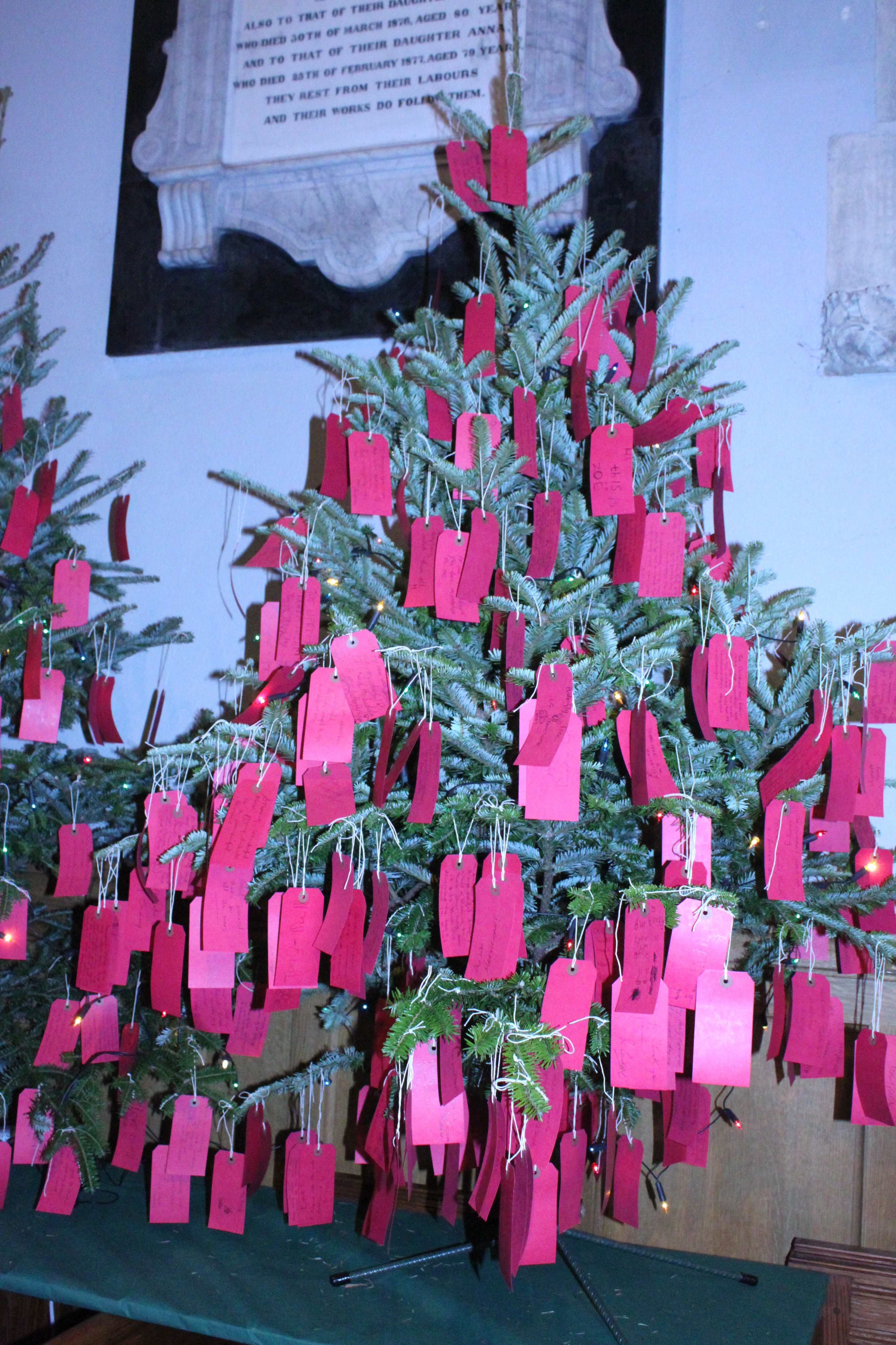 tree fest 3