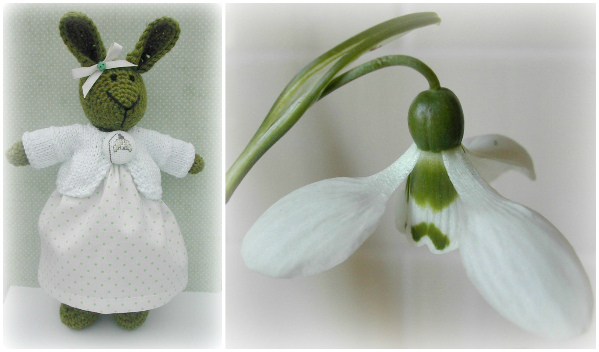 blog snowdrop Collage