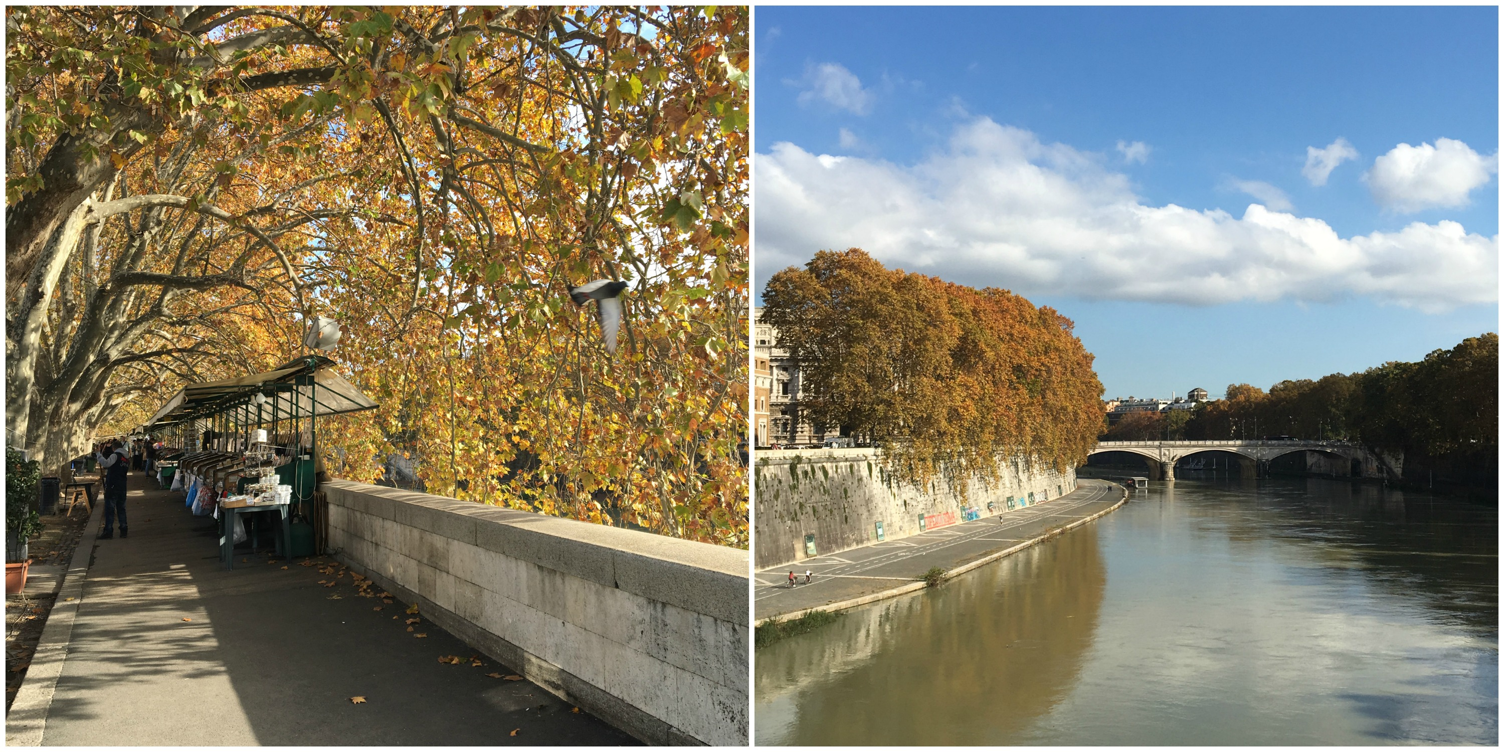 autumnal-rome-collage